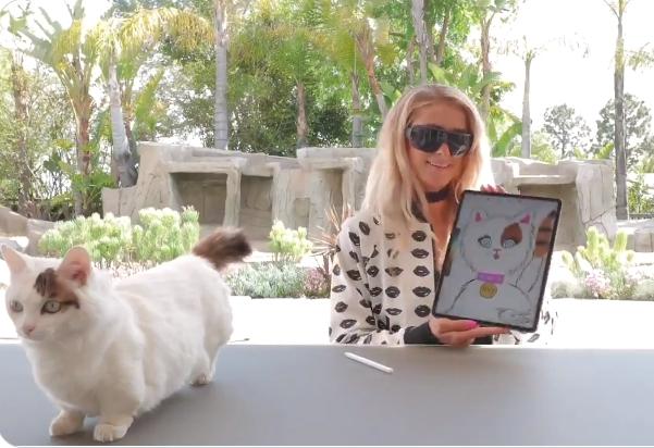 Paris Hilton verkoopt NFT (non fungible token) van haar poes en kat Munchin voor het goede doel